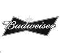 517 design clients include the Budweiser website development Tampa, Florida